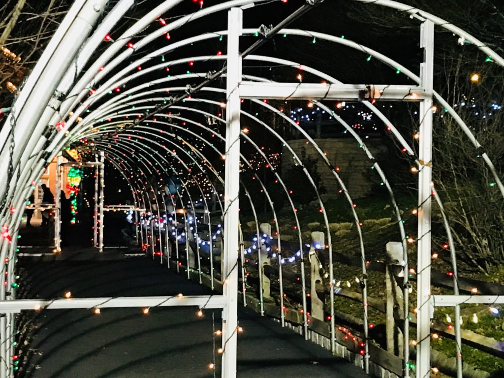 "Turtle Back Zoo Christmas Lights 2020 Holiday Light Spectacular at Turtle Back Zoo"" – Writing New Jersey"